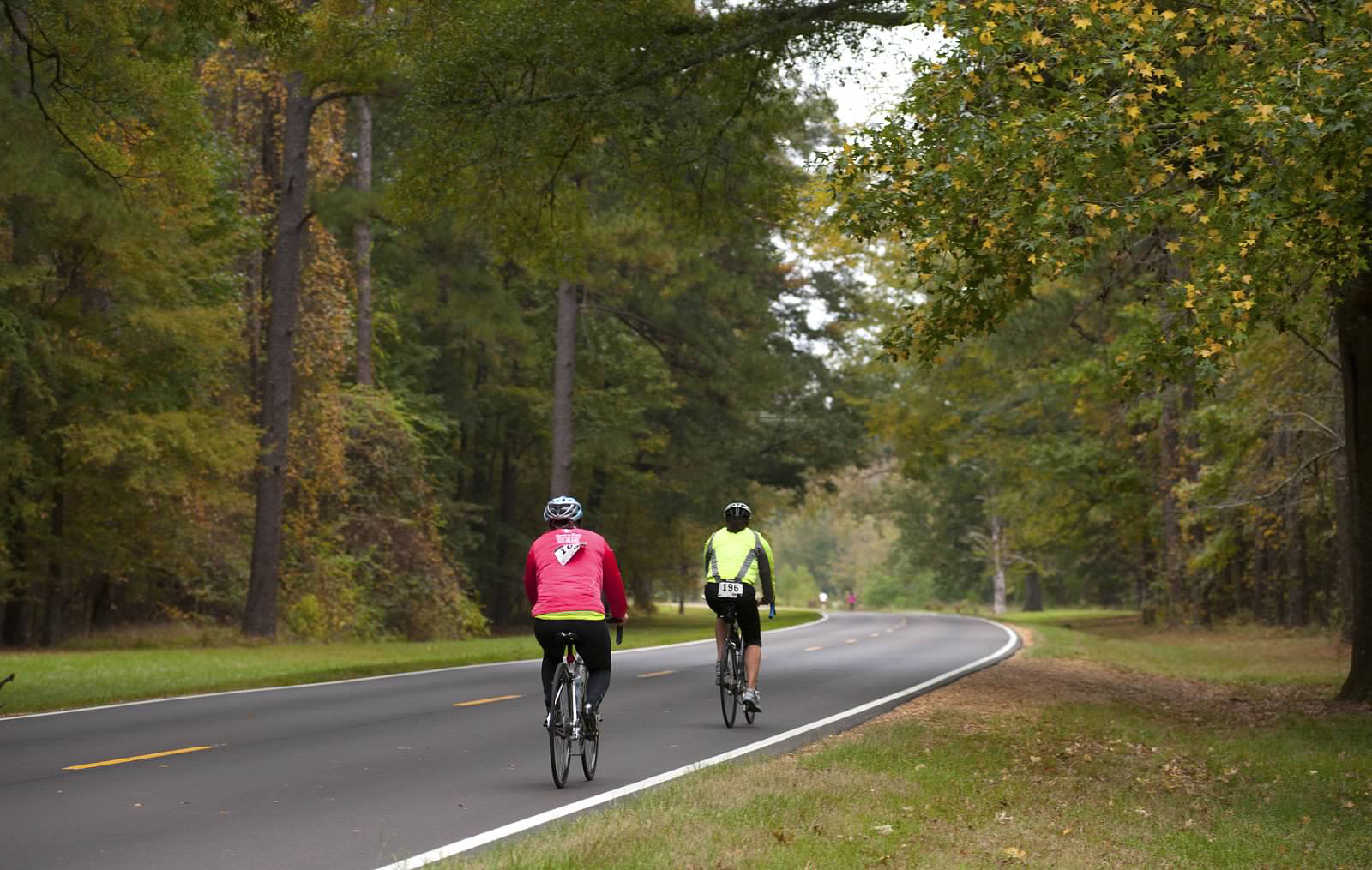 Cyclists on the Natchez Trace Parkway