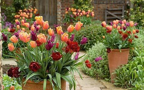 Martinson's Garden Works Ridgeland MS