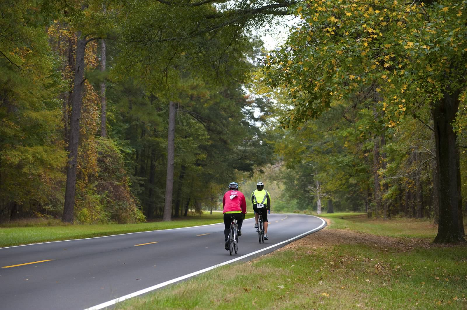 Two people riding bikes on the Natchez Trace parkway