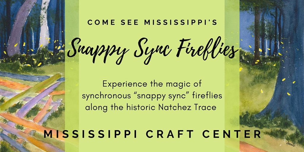 Snappy Sync Firefly Event